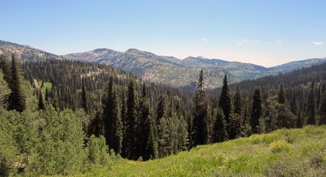 Grass Mountain Lakes 3