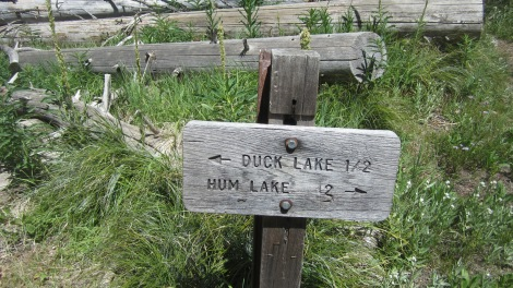 Hum Lake and Duck Lake Junction