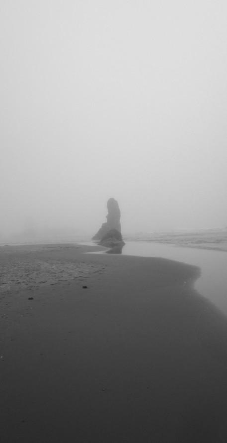 Oregon Coast Fog 2