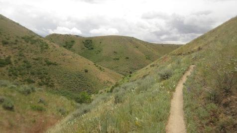 Boise Foothills Loop Hike Gulch, Watchman, Three Bears 9