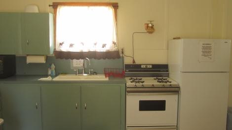 The Atlanta Cabin Idaho Kitchen